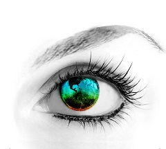 Resized Eye Image