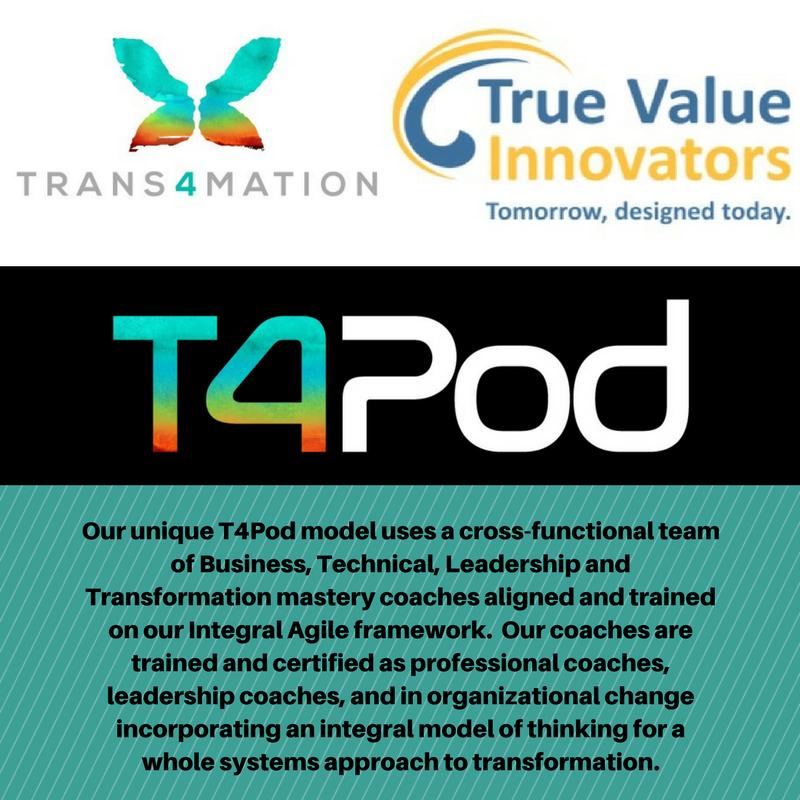 T4-TVI Option 5