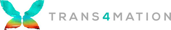 trans4mation_logo_600